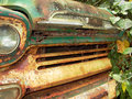 Vinage rusted pickup truck grille abandoned rusty vintage green and white with vines growing on it Stock Photography