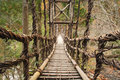 Vine Bridge (Kazurabashi) Stock Photography