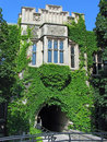 Vine covered college building Stock Image