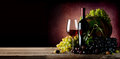 Vine of grape with wine Royalty Free Stock Photo