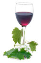 Vine leaf glass of red wine with grape leaves on white background Stock Image