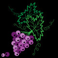 Vine with leaves and grapes pattern embroidery stitches imitatio