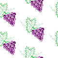 Vine with leaves and grapes seamless pattern embroidery stitches