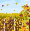Vineyard autumn background Vector. Fall decors card