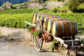 Vineyard with barrels, France Royalty Free Stock Image