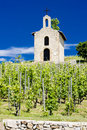 Vineyard and chapel in France Royalty Free Stock Photos