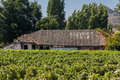 Vineyard in chile a plantation colchagua valley and a building whose roof is being rebuilt Stock Photography