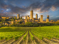 Vineyard covered hills of tuscany italy with san gimignano in the background Royalty Free Stock Photography