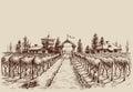 Vineyard drawing