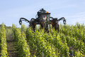 Vineyard france mechanized spraying of a with insecticide near reims in the champagne region of northeast Stock Image
