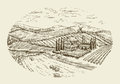 Vineyard landscape. Hand drawn vintage sketch agriculture, farming, farm