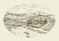 Vineyard landscape. Hand drawn vintage sketch agriculture, farming, farm