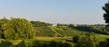Vineyard landscape vineyard south west of france bordeaux viney Royalty Free Stock Photography