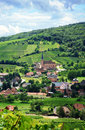 Vineyard and small village in Alsace - France Royalty Free Stock Photo