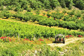 Vineyard tractor, Gorges du Tarn, France Royalty Free Stock Image