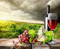 Vineyard and wine in mountains green on a table Stock Photography