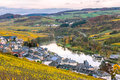 Vineyards along river moselle in luxembourg the autmn colors the Royalty Free Stock Photos