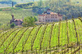Vineyards and castle of Barolo. Piedmont, Italy. Stock Image