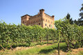 Vineyards and castle of Grinzane Cavour. Royalty Free Stock Photography