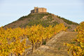 Vineyards and Davalillo castle, La Rioja Stock Images