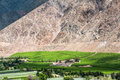 Vineyards of Elqui Valley, Andes, Chile Royalty Free Stock Photo