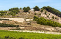 Vineyards in la rioja the spanish province of on a sunny day Stock Image