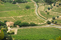 The vineyards of Le Castellet Royalty Free Stock Image