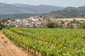Vineyards with picturesque village at background Royalty Free Stock Photo