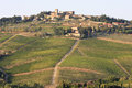 Vineyards of Radda in Chianti, Tuscany, Italy Royalty Free Stock Photos