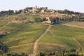 Vineyards of Radda in Chianti, Tuscany, Italy Royalty Free Stock Photo