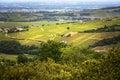 Vineyards of Solutré village, Bourgogne, France Royalty Free Stock Photo