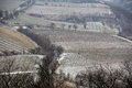 Vineyards wineyards under snow in winter in austria next to vienna Stock Photography
