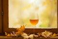 Vinho branco do outono Fotos de Stock