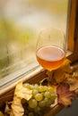Vino bianco di autunno Fotografie Stock Libere da Diritti