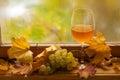 Vino bianco di autunno Immagini Stock