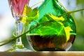 Vino de Rosé Imagen de archivo libre de regalías