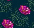 Seamless pattern with Cosmos bipinnatus. Hand drawing decorative background. Vector pattern. Print for textile, cloth, wallpaper,