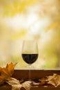 Vino rojo del otoño Foto de archivo libre de regalías