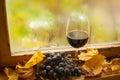 Vino rosso di autunno Immagine Stock Libera da Diritti