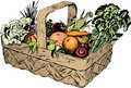 Vintage 1950s Harvest Basket Stock Photography