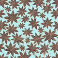 Vintage anise star spices background