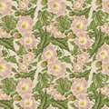 Vintage Antique Pink Flower Pattern Royalty Free Stock Image