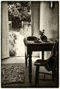 Vintage antique sepia victorian english country garden view from indoors Stock Photos