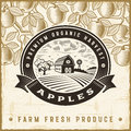 Vintage apple harvest label Royalty Free Stock Photo
