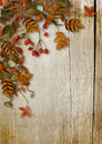 Vintage autumn background with leaves and rowan on wooden boards Royalty Free Stock Photo
