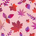 Vintage autumn leaves seamless pattern background colorful tree eps vector file with transparency organized in layers for easy Stock Image