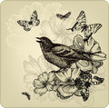 Vintage background with birds, roses and butterfli Stock Images