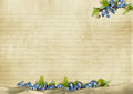 Vintage background with flowers with place for photo and text Stock Photography