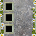 Vintage background with frame and flowers Royalty Free Stock Photography