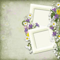 Vintage background with frame and spring flowers Stock Photos